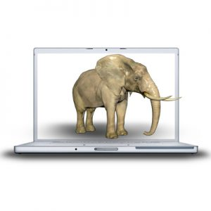 You Can't Ignore the Elephant in the Server Room