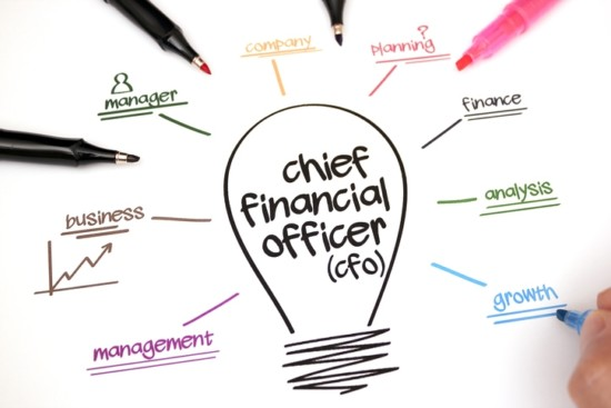 The CFO's Guide to Smart Investing in Information Technology